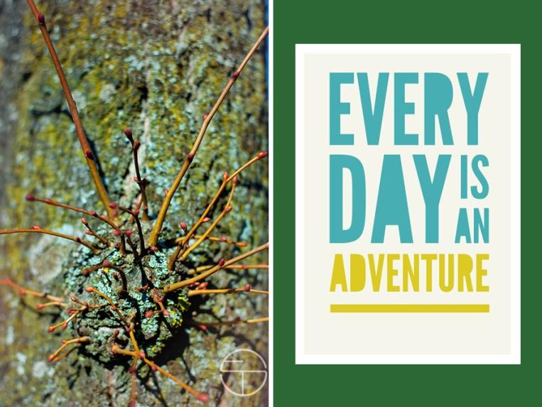 adventure nature hunt